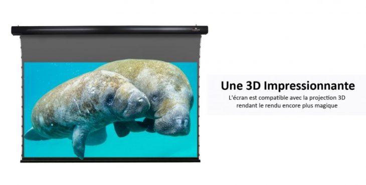 Vividstorm toile compatible 3D